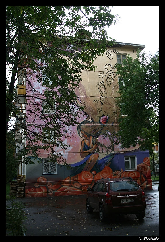 Painted houses in Moscow by graffiti kids 2