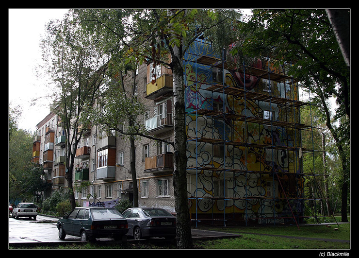 Painted houses in Moscow by graffiti kids 4