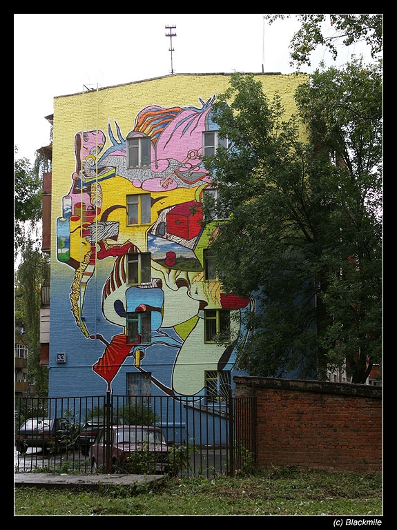 Painted houses in Moscow by graffiti kids 8