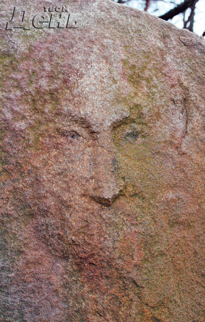 Jesus face on Rock