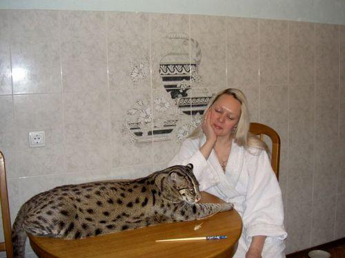 Russian pet 2
