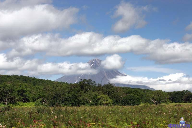 Kamchatka 18