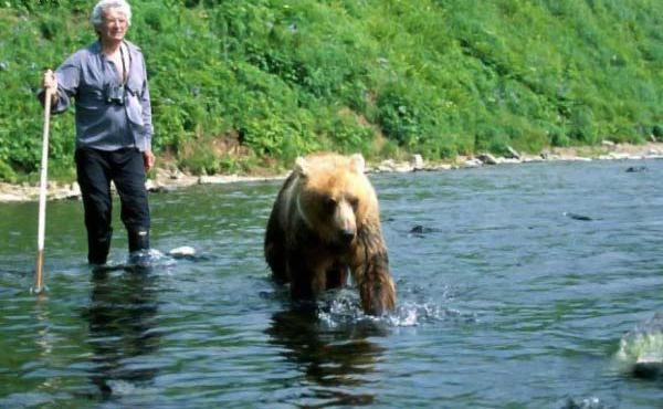 russian bears 4