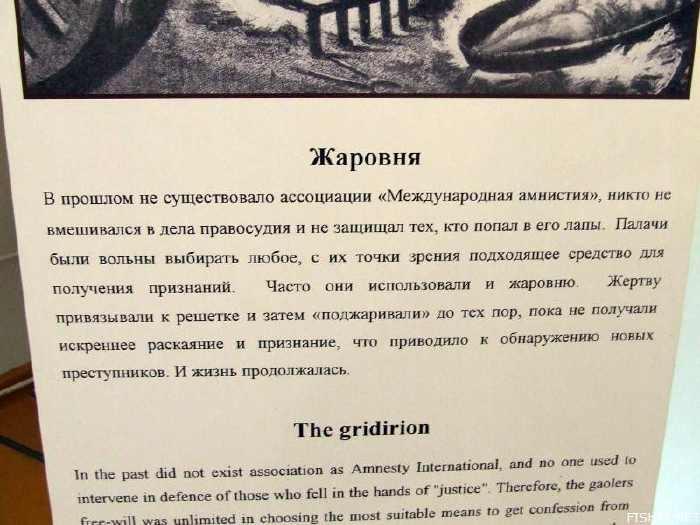Kuntzkamera, Museum Paling Angker Di Dunia