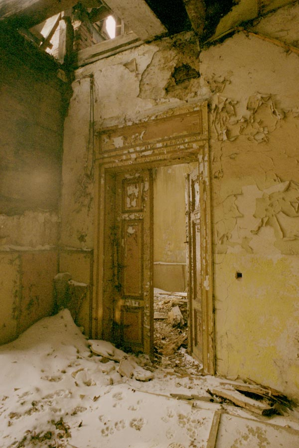 mendeleev's house