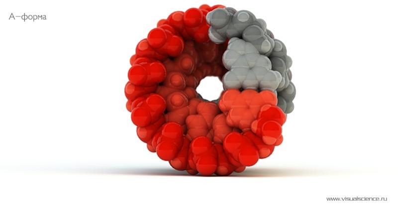 Russian molecular models 5