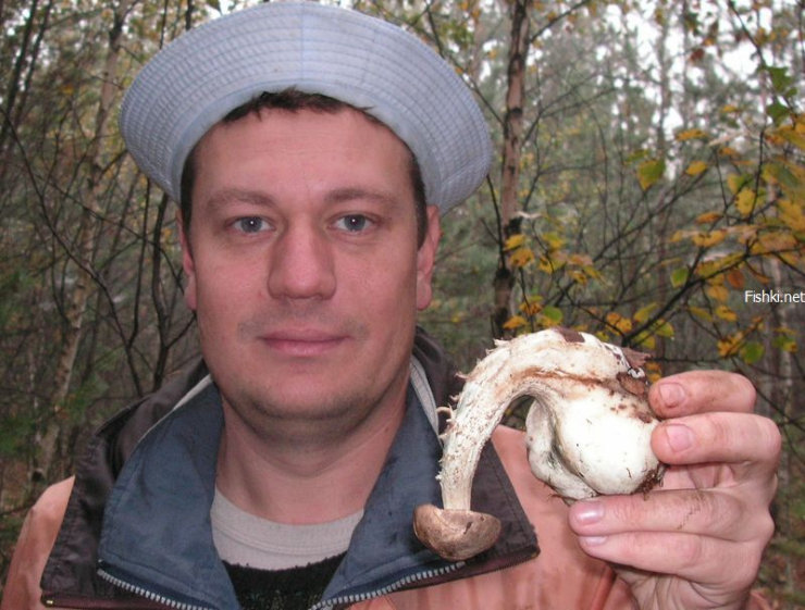 strange looking Russian mushrooms 6