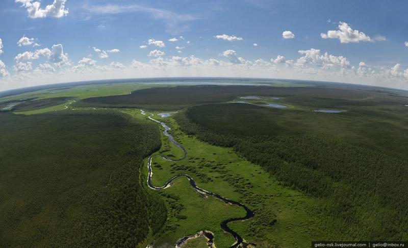 Nature of the Novosibirsk Region From Above 1