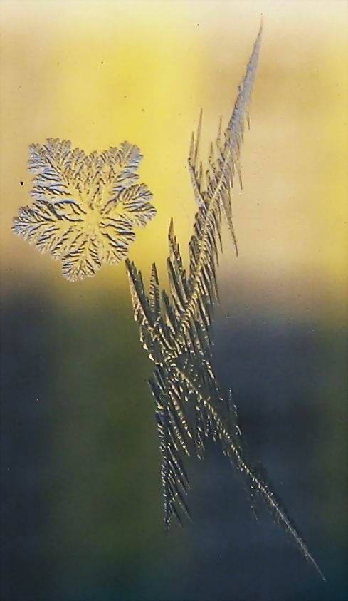 Awesome Winter Patterns