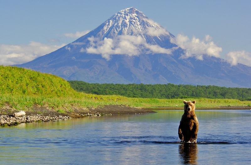 Pure Nature Of Kamchatka