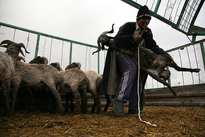 Visiting Uzbek Markets
