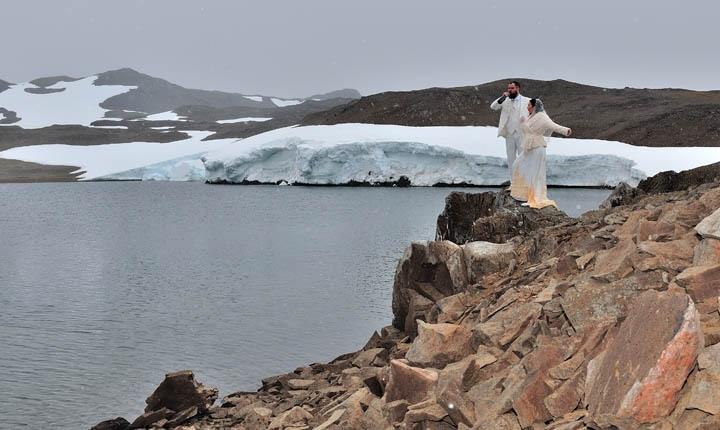 Wedding In The Company of Penguins