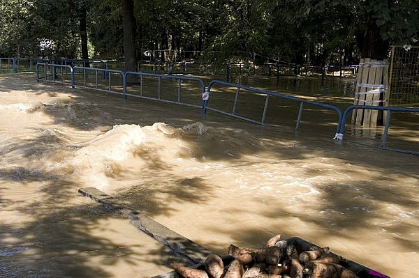 another flood in Moscow 11