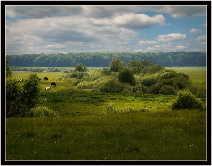 beautiful landscapes of the Russian Federation 13