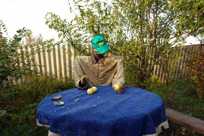 strange scarecrow in Russian garden 1