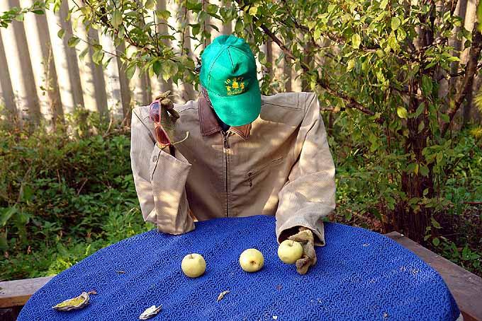 strange scarecrow in Russian garden 5