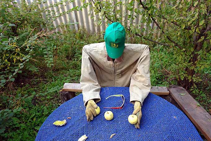 strange scarecrow in Russian garden 6