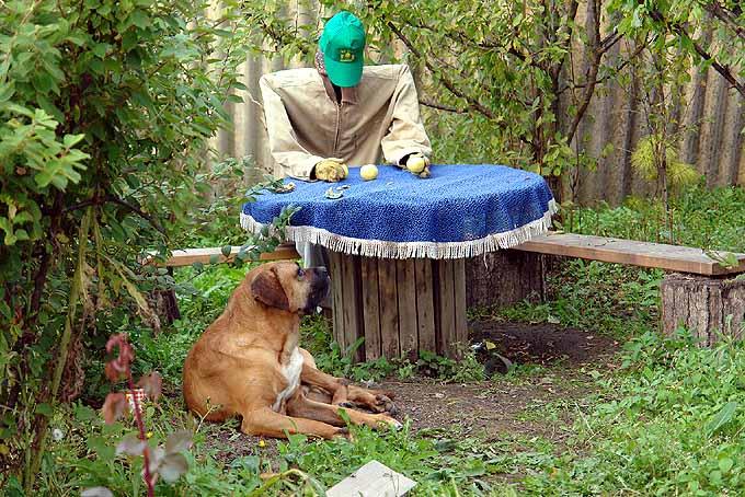 strange scarecrow in Russian garden 7