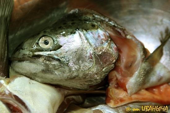 Cooking An Original Fish Soup