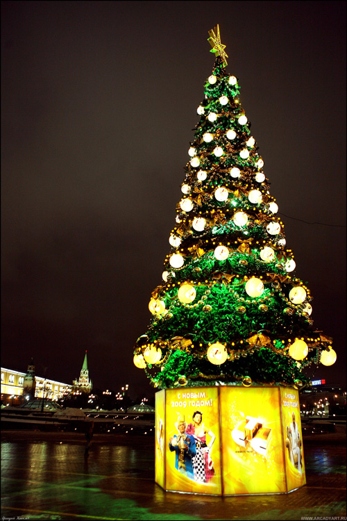 New Year Trees in Moscow, Russia 13