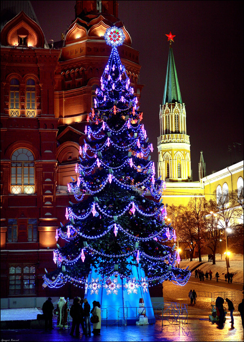 New Year Trees in Moscow, Russia 14