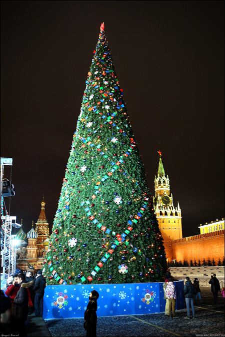 New Year Trees in Moscow, Russia 15