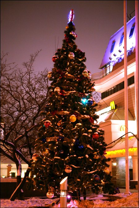 New Year Trees in Moscow, Russia 19