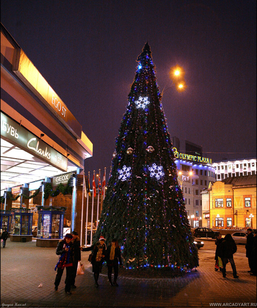 New Year Trees in Moscow, Russia 21