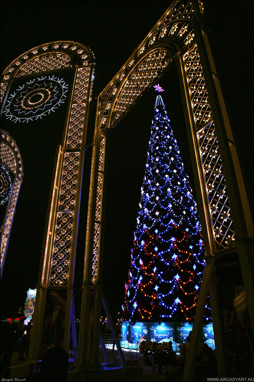 New Year Trees in Moscow, Russia 28