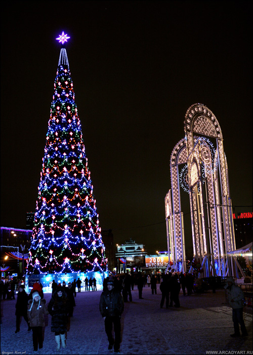 New Year Trees in Moscow, Russia 29