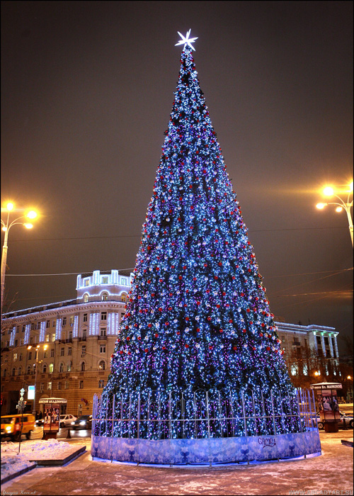 New Year Trees in Moscow, Russia 37