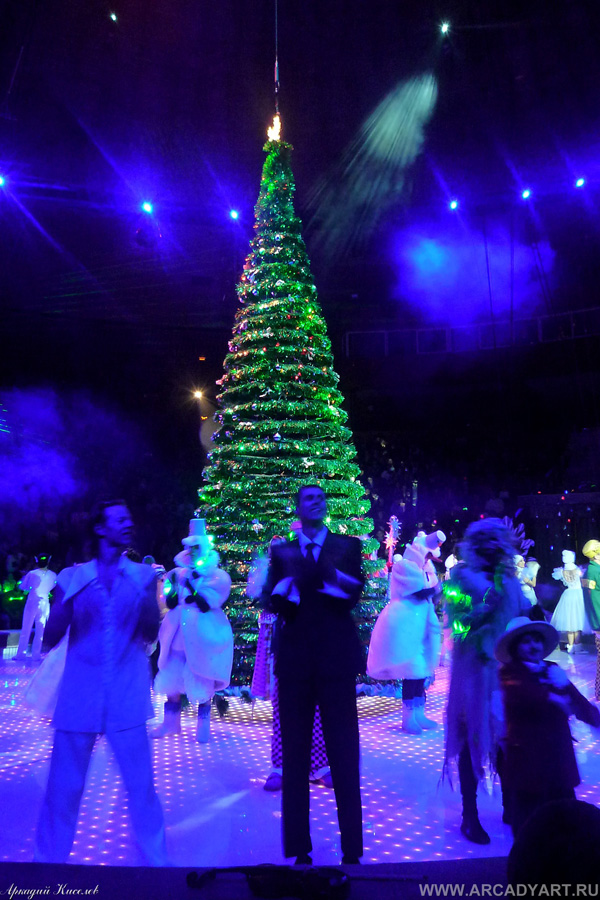 New Year Trees in Moscow, Russia 41