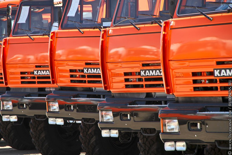 Newborn KAMAZ Vehicles 6