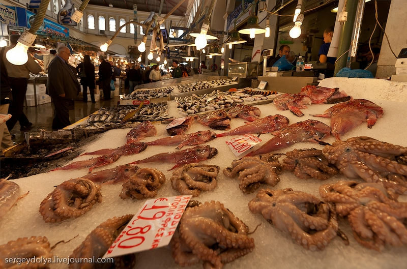 World best travel places athens fish market and not only for Sea world fish market