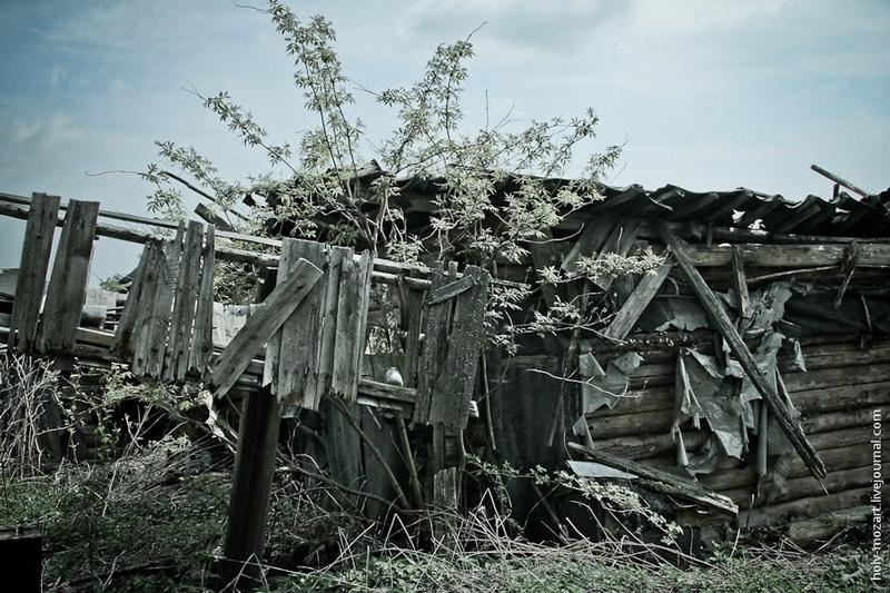 An Orphaned House