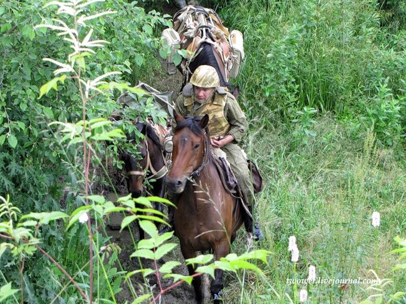 Life of an Ordinary Motorized Brigade