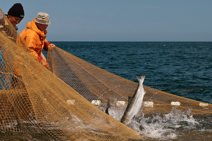 что такое дрифтерная рыбалка