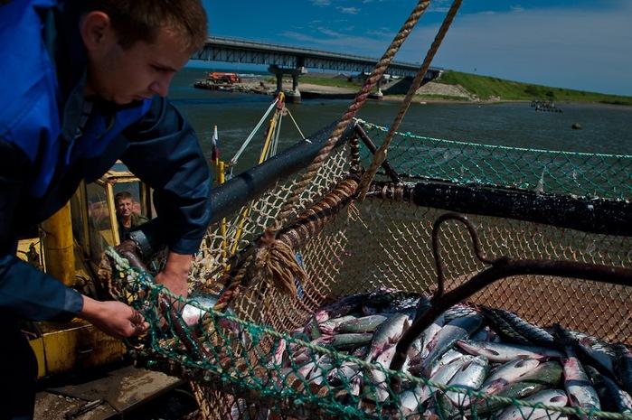 сахком форум южно-сахалинск рыбалка новости