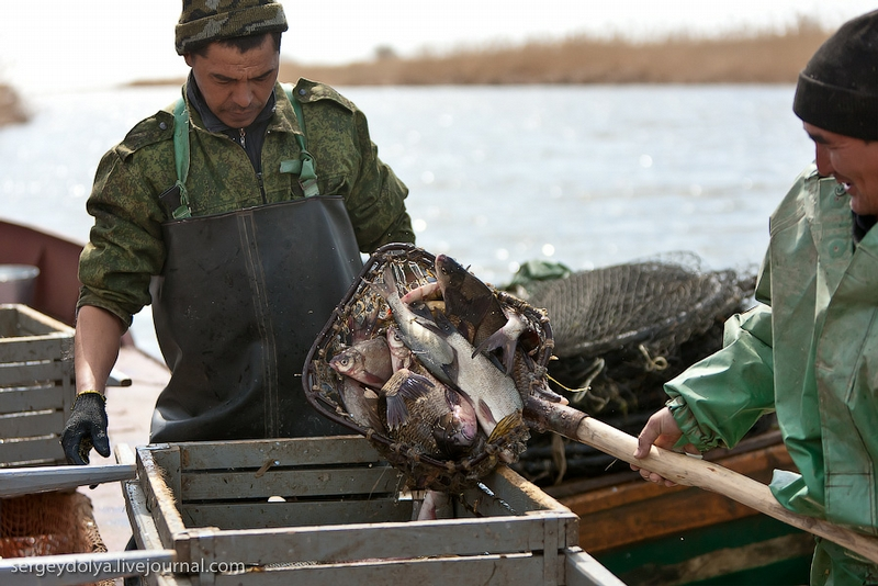 Professional Fishing in Astrakhan