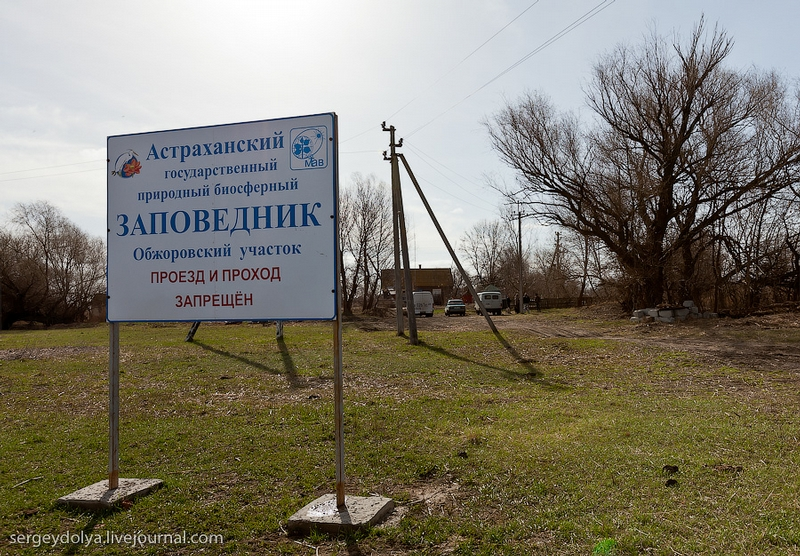 The Nature Reserve Near Astrakhan