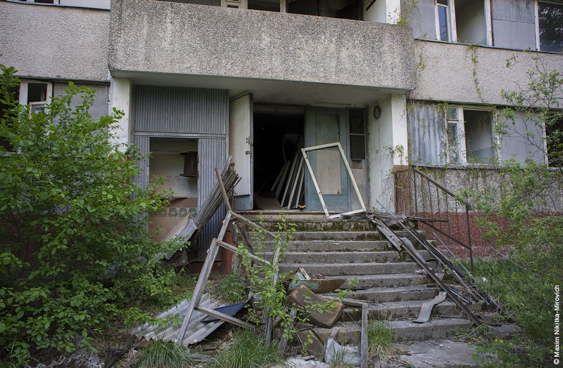 Residential Areas of Pripyat: Forests In Place of Streets