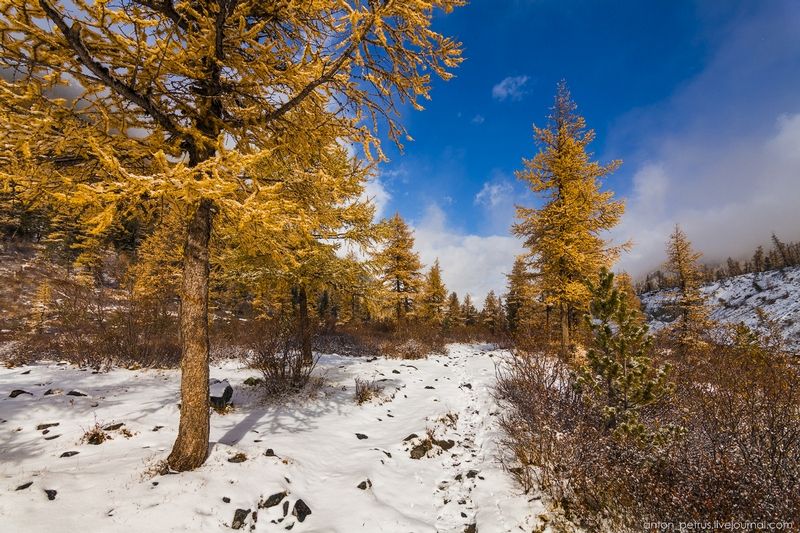 Beauty of Russian Nature in Fall and Winter Months