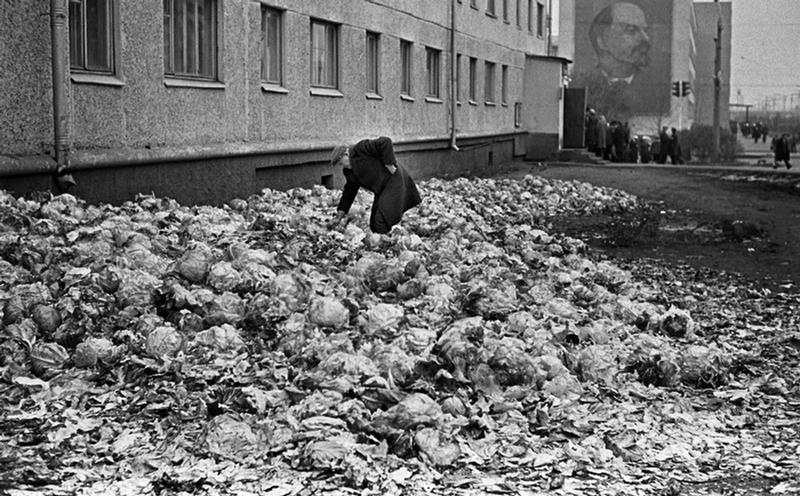 Dark Face of Socialism by Vlad Sokolaev