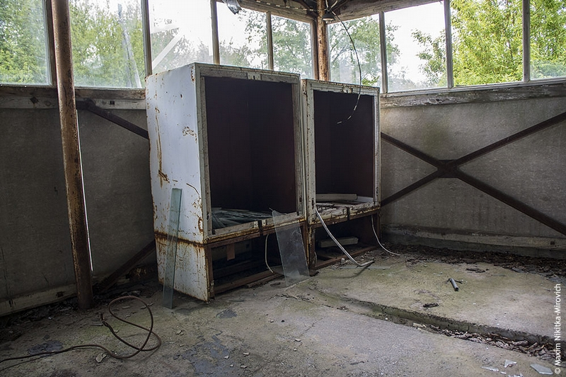Fish Farm in Chernobyl