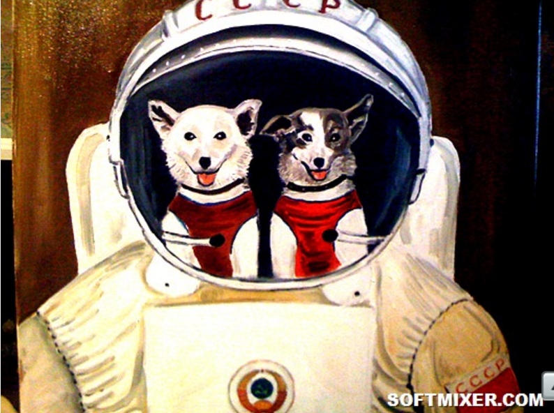 This Day in History: July 22, 1951, First Live Animals Fly to Space