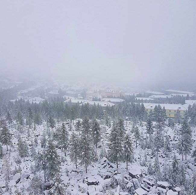 First August Snow in Yakutia, Russia