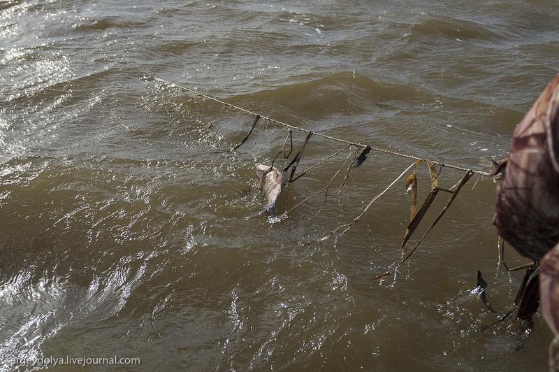 рыбалка сетями в астрахани