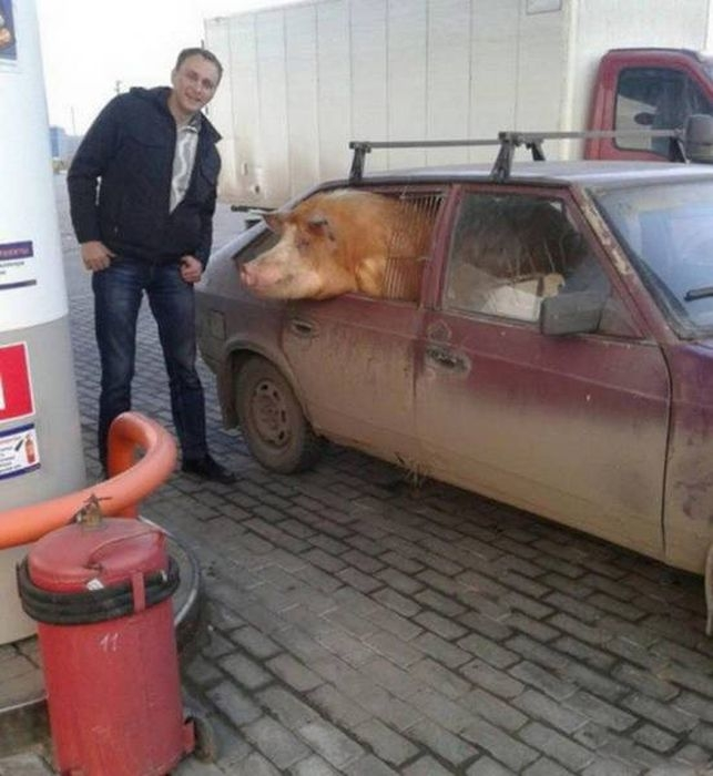 Only in Russia Photos, Part 4