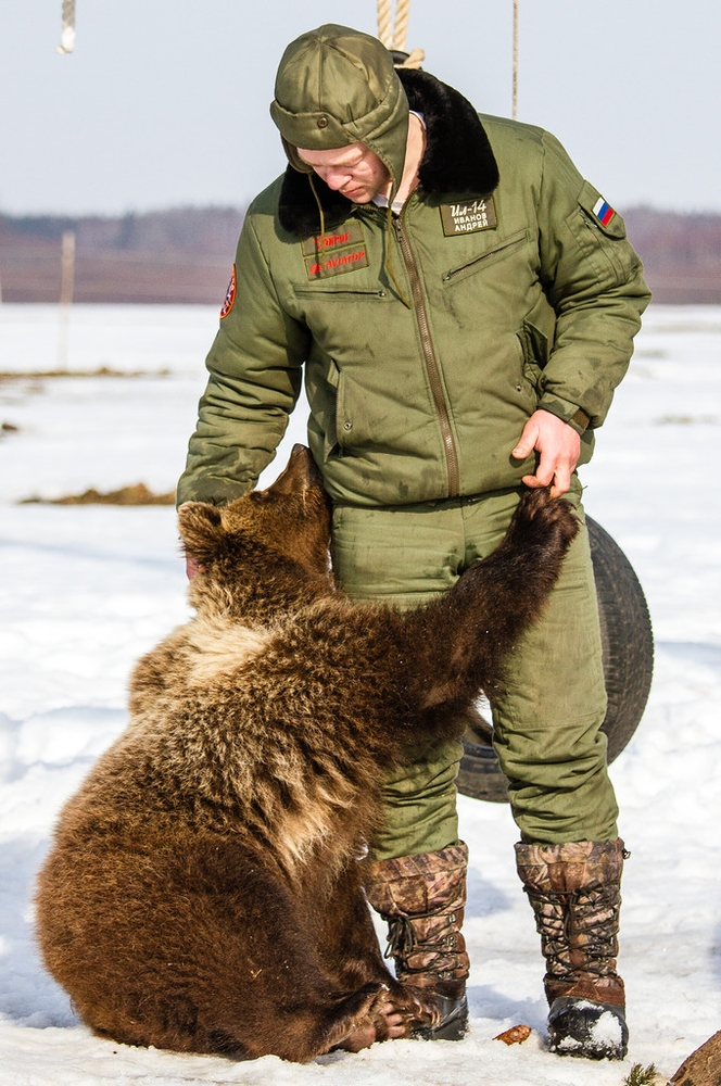 Bear Found its Home on Russian Airfield
