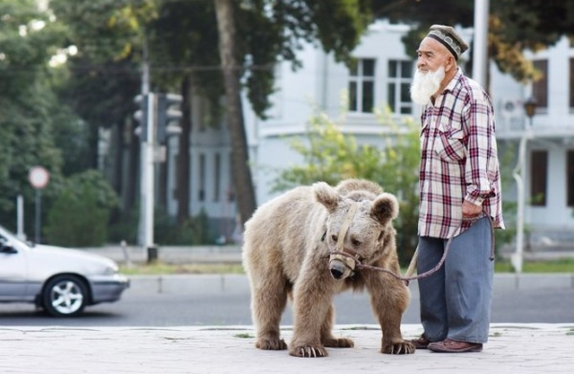 "Story of Old Man and His Bear ""Daughter Maria"" [6 photo]"